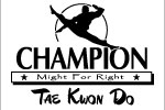 Champion Tae Kwon Do